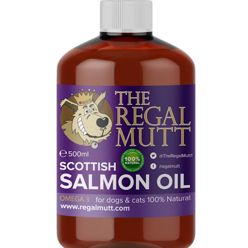 Salmon oil for dogs and cats